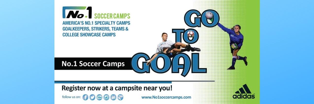 Go-to-Goal